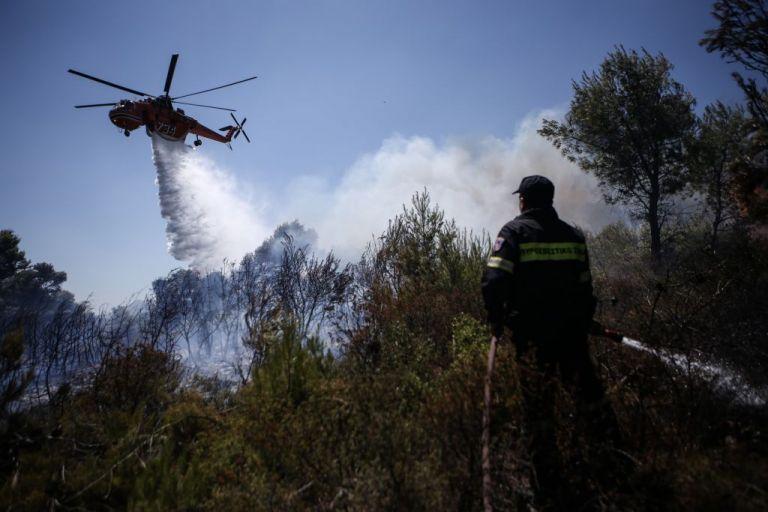 Πυρκαγιές σε Ζάκυνθο και Λουτράκι: Ο απολογισμός και η κατάσταση των μετώπων | tanea.gr