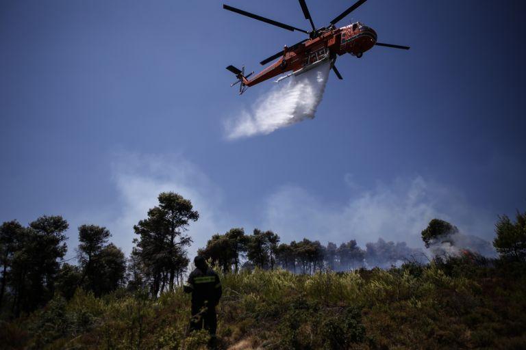 Φωτιά στη Νέα Μάκρη: Αυτό είναι το προφίλ του ύποπτου για εμπρησμό | tanea.gr