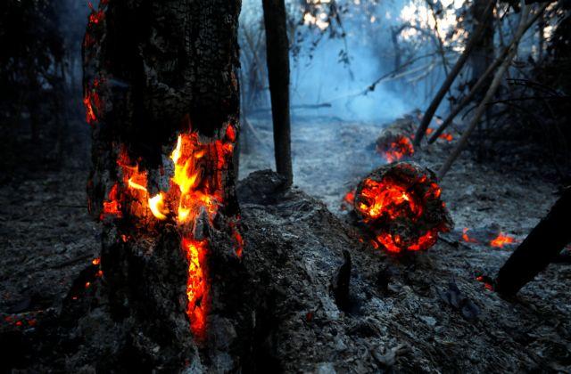Διαμαρτυρία «Ρουβίκωνα» στην οικία του πρέσβη της Βραζιλίας - Για τις φωτιές στον Αμαζόνιο | tanea.gr
