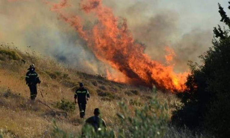 Παραμένει υψηλός ο κίνδυνος πυρκαγιάς το Σάββατο λόγω των θυελλωδών ανέμων   tanea.gr