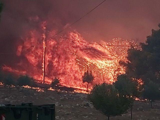 Συγκλονιστικά βίντεο από τη Ζάκυνθο: Οι φλόγες «γλείφουν» τα σπίτια | tanea.gr
