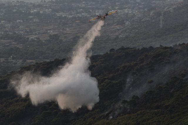 Πυρκαγιά στη Νέα Μάκρη: Καταγγελίες για εμπρησμό | tanea.gr
