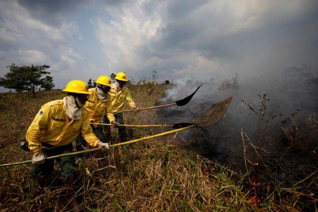 Ποιοι «χαίρονται» από την καταστροφή του δάσους στον Αμαζόνιο; -Business & οικονομικά συμφέροντα | tanea.gr