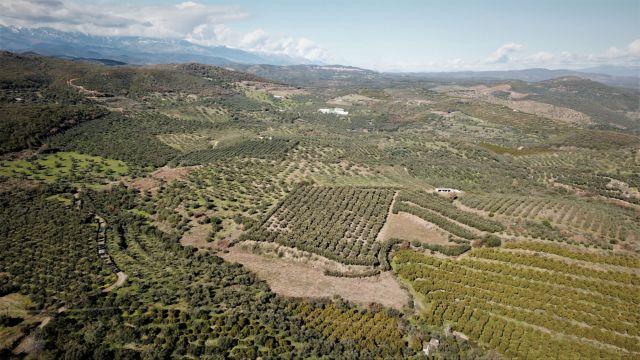Το Δημόσιο παίρνει τις περιουσίες ενός χωριού | tanea.gr