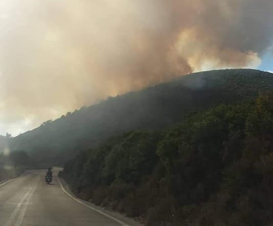 Ξανά στις φλόγες η Ζάκυνθος | tanea.gr