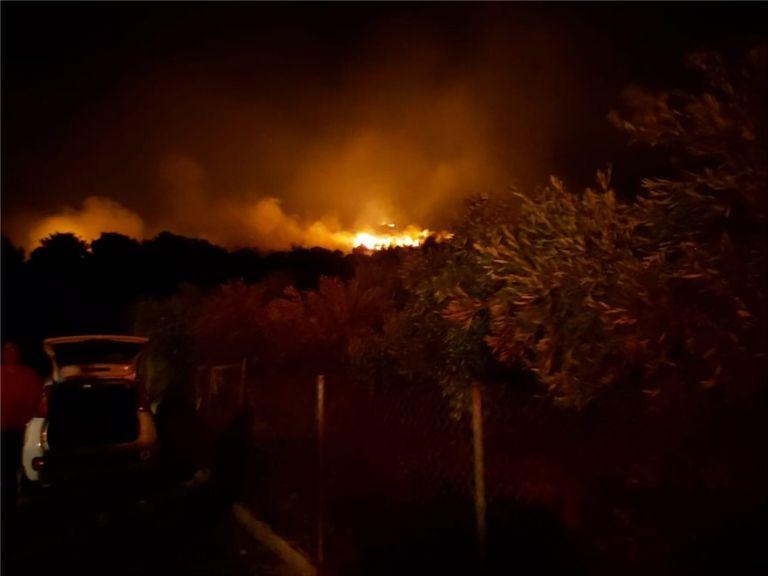 Mεγάλη φωτιά στη Νέα Μάκρη – Δίνουν σκληρή μάχη με τις φλόγες οι πυροσβέστες | tanea.gr