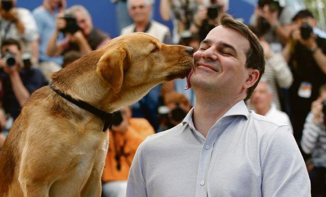 Σκύλοι που θεραπεύουν : Άνευ όρων αγάπη και φροντίδα σε όσους έχουν ανάγκη   tanea.gr