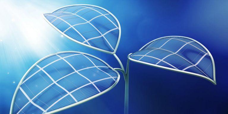 Ερευνητές δημιούργησαν «τεχνητό φύλλο» στη μάχη κατά της κλιματικής αλλαγής | tanea.gr