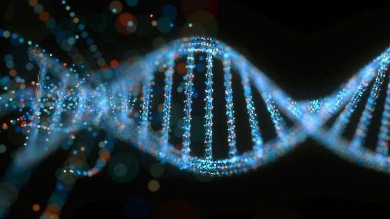 Μια απίστευτη ιστορία: Ποιος «φακελώνει» το DNA μας | tanea.gr