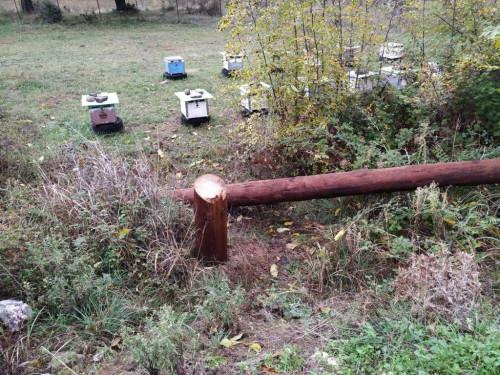 Βέροια : Πριόνισαν κολόνες της ΔΕΗ που έδιναν ρεύμα σε προσφυγικό καταυλισμό | tanea.gr