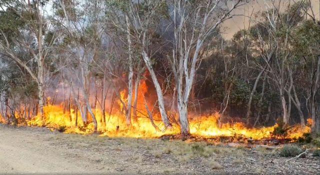 Αυστραλία : Σε επιφυλακή λόγω υψηλών θερμοκρασιών και ισχυρών ανέμων | tanea.gr