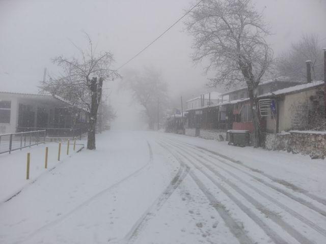 Δείτε πού χιονίζει τώρα – Εικόνες από όλη την Ελλάδα | tanea.gr