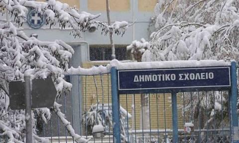 Ποια σχολεία θα παραμείνουν κλειστά λόγω κακοκαιρίας | tanea.gr