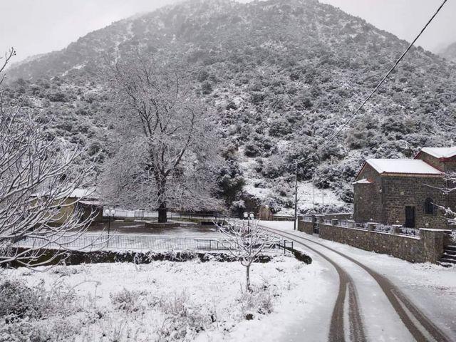 Έρχεται πολικό ψύχος από τα βόρεια - Πότε θα χτυπήσει τη χώρα μας | tanea.gr