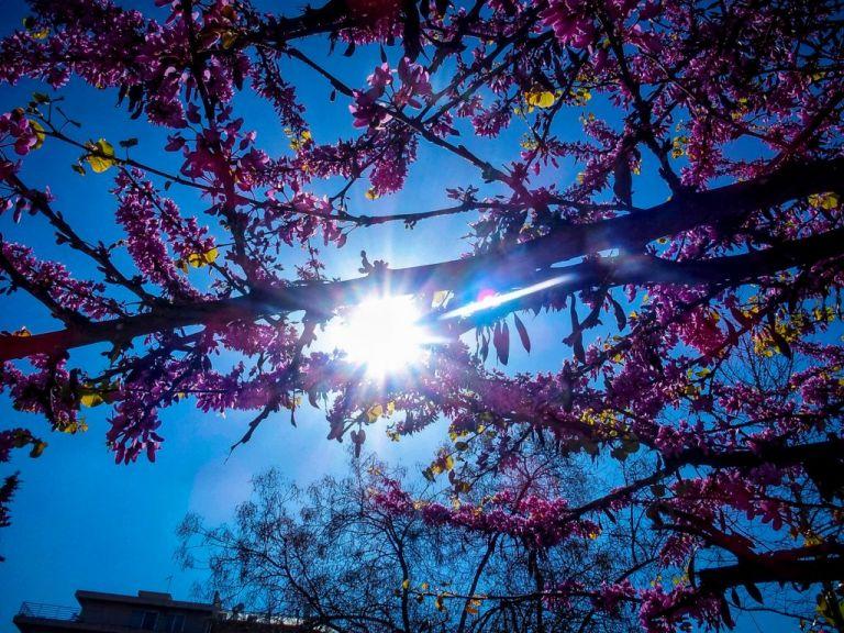 Αίθριος την Κυριακή ο καιρός | tanea.gr