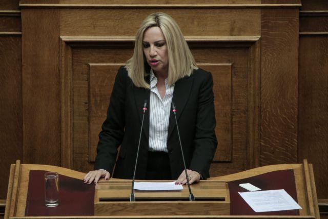 Γεννηματά : «Το νέο κοινωνικό συμβόλαιο χρειάζεται διαρκή αγώνα» | tanea.gr