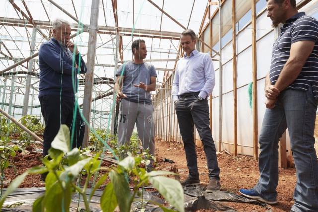 Επίσκεψη Μητσοτάκη σε αγρόκτημα – Ψηφιακή πλατφόρμα που περιορίζει τους μεσάζοντες   tanea.gr