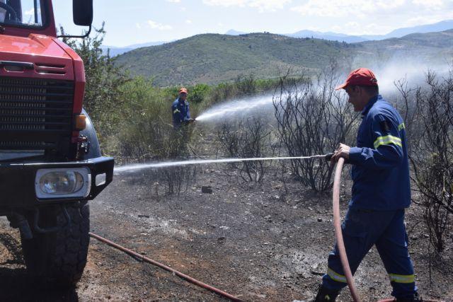 WWF: «Η φωτιά σε αφορά» –  Οσα πρέπει να γνωρίζουμε σε περίπτωση πυρκαγιάς | tanea.gr