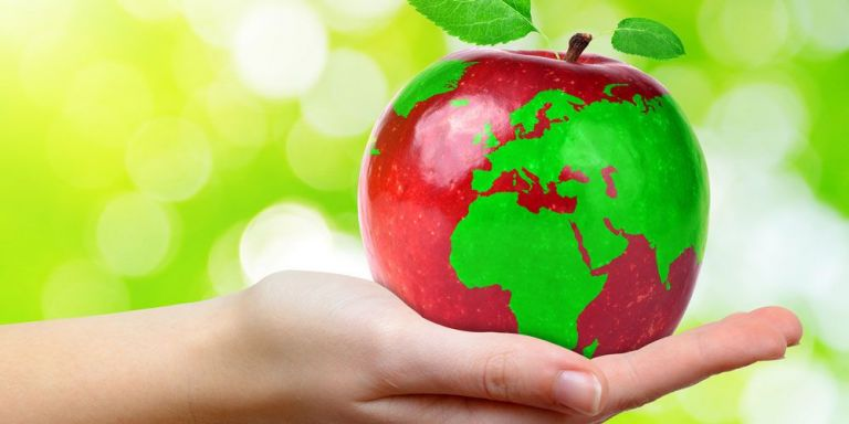 Μεγάλη έρευνα για τις διατροφικές συνήθειες και το περιβάλλον - Τι επιλέγουν πλέον οι Ελληνες | tanea.gr