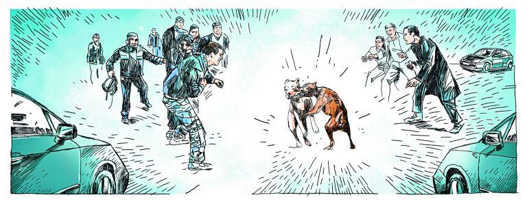 Μετατρέπουν τα σκυλιά σε φονικές μηχανές | tanea.gr