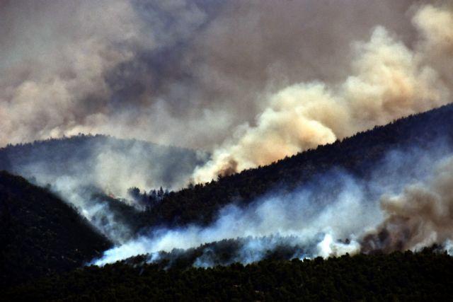 Κόντρα κυβέρνησης – ΣΥΡΙΖΑ για τη φωτιά στις Κεχριές | tanea.gr