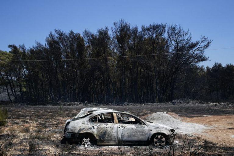 Μήνυση κατά παντός υπευθύνου για τη φωτιά του 2017 θα καταθέσει ο δήμαρχος Κυθήρων | tanea.gr
