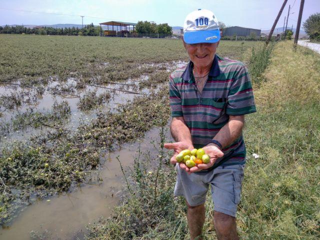 Πότε θα αποζημιωθούν οι αγρότες για ζημιές του 2019-2020 | tanea.gr