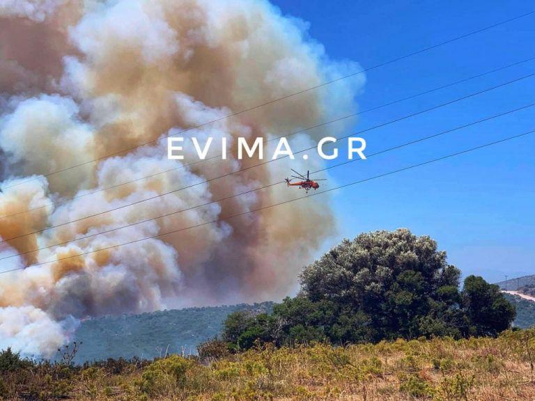 Εύβοια : Ανεξέλεγκτη η δασική φωτιά στους Ραπταίους - Κατευθύνεται προς οικισμό | tanea.gr