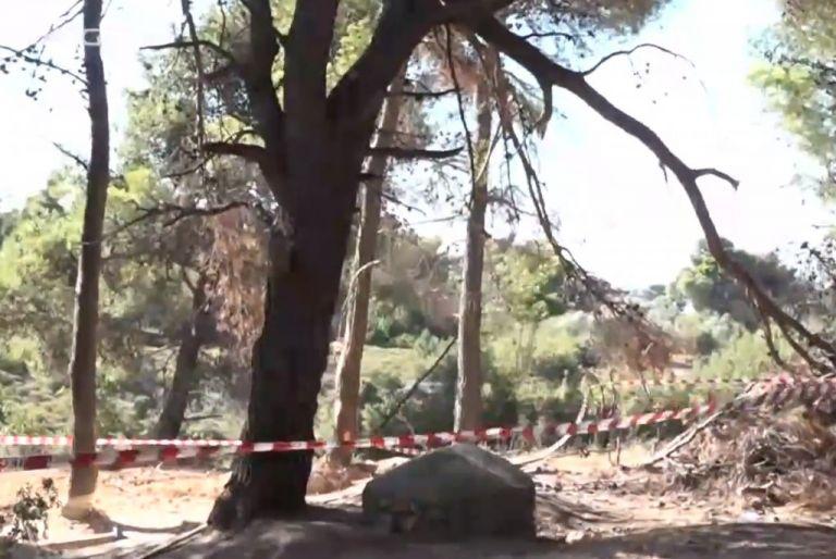 Βαρυμπόμπη: Θησαυρό αναζητούσαν οι τρεις άντρες που εντοπίστηκαν νεκροί | tanea.gr
