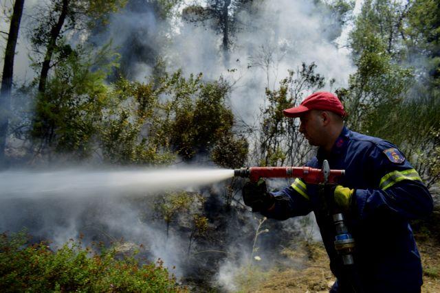 Πυρκαγιά σε δασική έκταση στο Πόρτο Γερμενό | tanea.gr