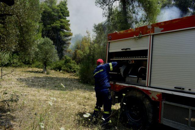 Υπό μερικό έλεγχο η πυρκαγιά στο Πόρτο Γερμενό | tanea.gr