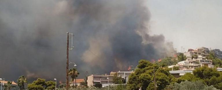 Πύρινα μέτωπα σε όλη τη χώρα – Σε αυλές σπιτιών οι φλόγες στις Κεχριές   tanea.gr