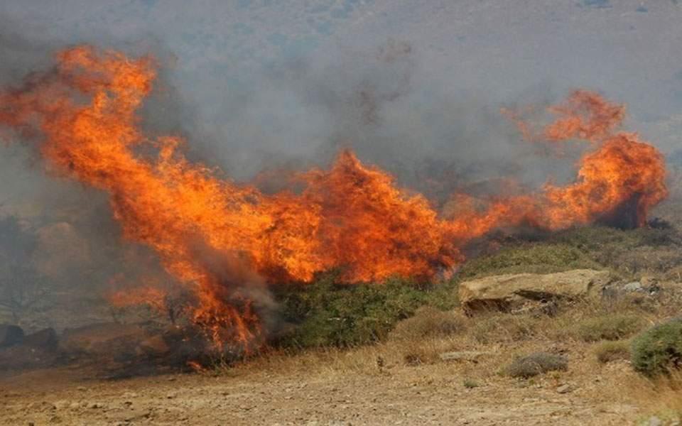Ωραιόκαστρο: Φωτιά κοντά στον οικισμό Γαλήνη - ΤΑ ΝΕΑ