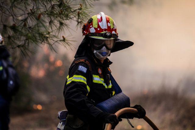Πυρκαγιά στη Ζάκυνθο – Στις φλόγες η Δάφνη | tanea.gr