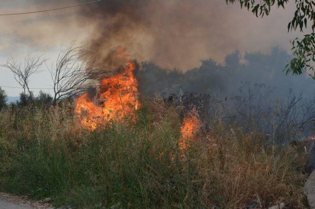 Φωτιά καίει χαμηλή βλάστηση στην Κερατέα | tanea.gr