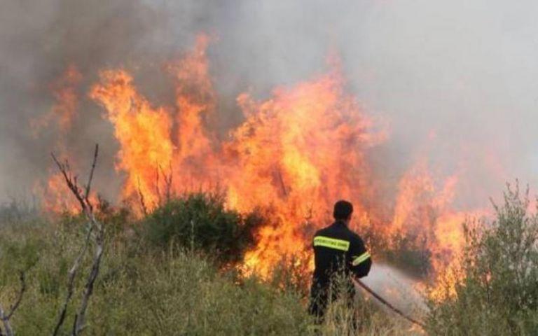 Μάχη της Πυροσβεστικής με τη φωτιά στην Κάρυστο – Κινδύνευσαν σπίτια στην Κνωσό | tanea.gr