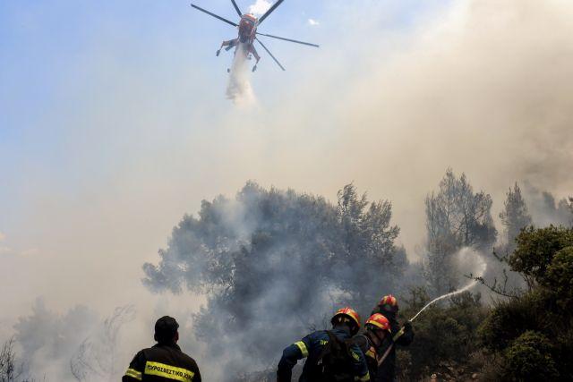 Μαίνεται η πυρκαγιά στις Κεχριές – Εκκενώθηκαν οικισμοί και κατασκήνωση - Στην περιοχή και ο Χαρδαλιάς   tanea.gr
