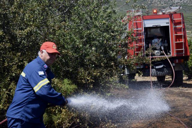 Φωτιά καίει δασική έκταση στη Ζάκυνθο | tanea.gr