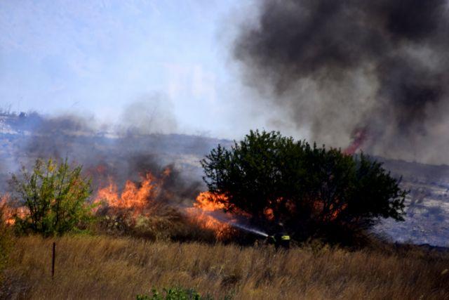 Φωτιά στην περιοχή Κάντια του Ναυπλίου | tanea.gr