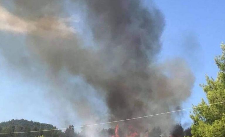 Μεγάλη φωτιά σε δασική έκταση στις Ροβιές Ευβοίας | tanea.gr