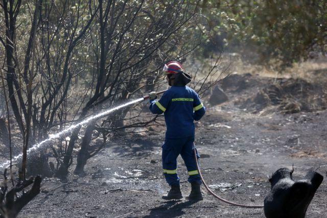 Αταλάντη: Σε απόσταση 200 μέτρων από σπίτια η πυρκαγιά | tanea.gr