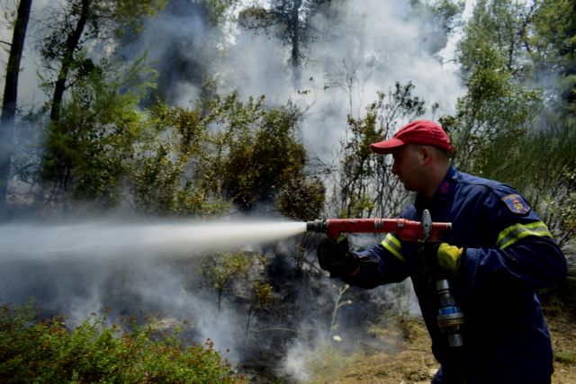 Μεγάλη πυρκαγιά στη Μάνη – Σε επιφυλακή οι Αρχές για εκκένωση οικισμού   tanea.gr