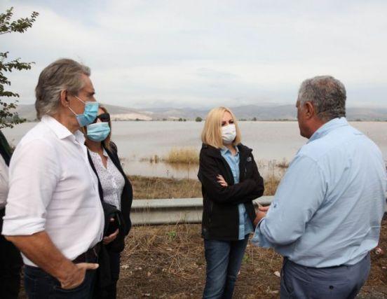 Γεννηματά από Καρδίτσα: Χρειάζεται ολοκληρωμένο σχέδιο για τις πληγείσες περιοχές | tanea.gr