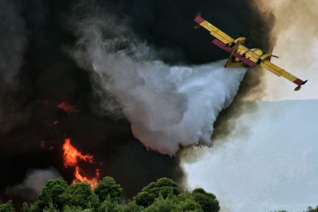 Σοφικό Κορινθίας: Συνεχίζεται η μάχη με τις φλόγες – Κλιμάκιο της μονάδας εμπρησμών στην περιοχή | tanea.gr