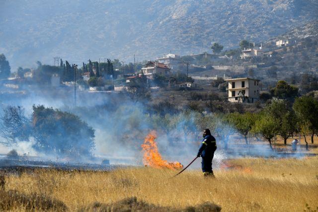 Σε ύφεση η πυρκαγιά στην Ανάβυσσο - Ψάχνουν αν πρόκειται για εμπρησμό | tanea.gr