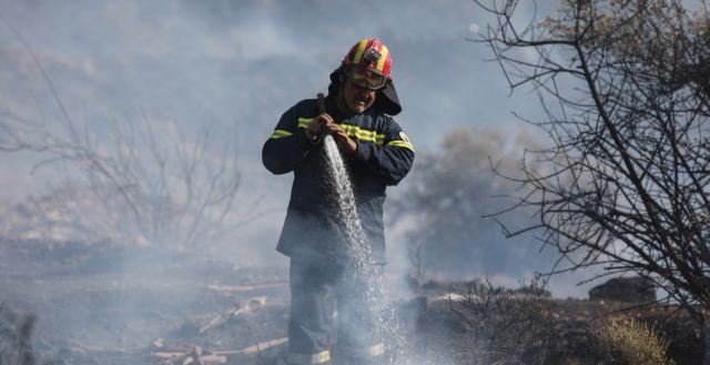 Υπό έλεγχο η πυρκαγιά στην Παλλήνη | tanea.gr