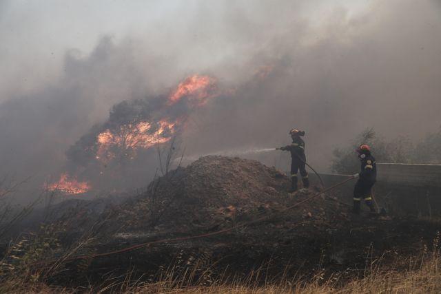 Φωτιά στην Ανάβυσσο: Υπό έλεγχο τα μέτωπα – Ερευνα για εμπρησμό | tanea.gr
