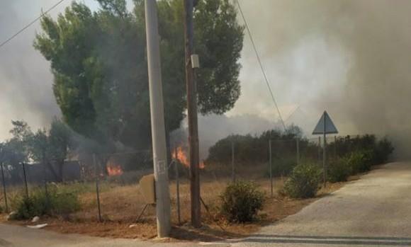 Σε ύφεση η πυρκαγιά στην Αρτέμιδα Αττικής | tanea.gr