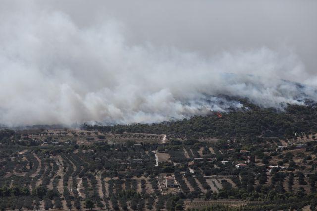 Φωτιά στην Κερατέα: Μέχρι την Κρήτη έφτασε ο καπνός | tanea.gr