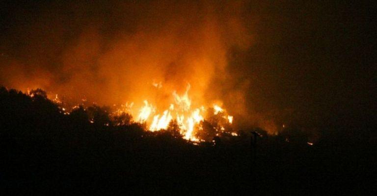 Μεγάλη φωτιά στα Φάρσαλα - Εκκενώνονται σπίτια | tanea.gr
